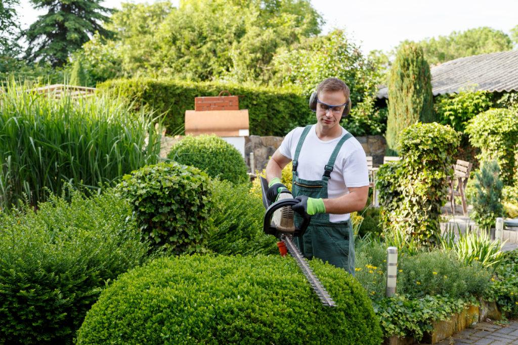 Grünanlagenpflege, Hausmeisterdienst, Gärtner bei Gartenarbeit
